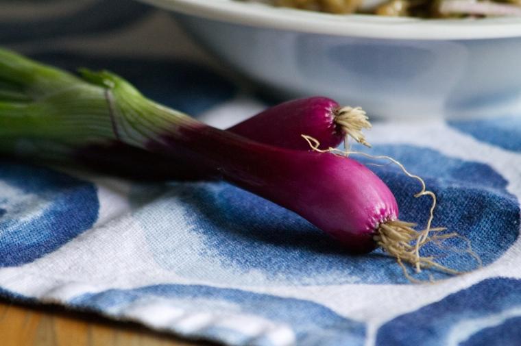 aubergine7
