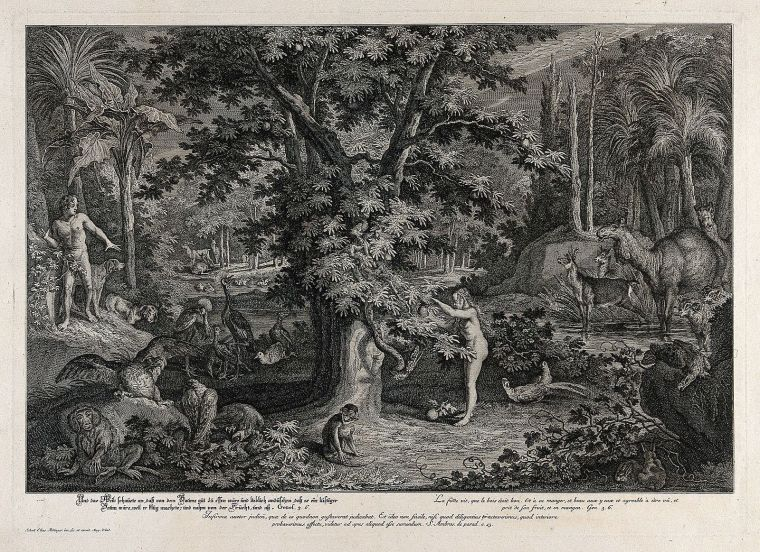 Eve_picks_the_apple_from_the_tree_as_the_serpent_emerges._Et_Wellcome_V0034430