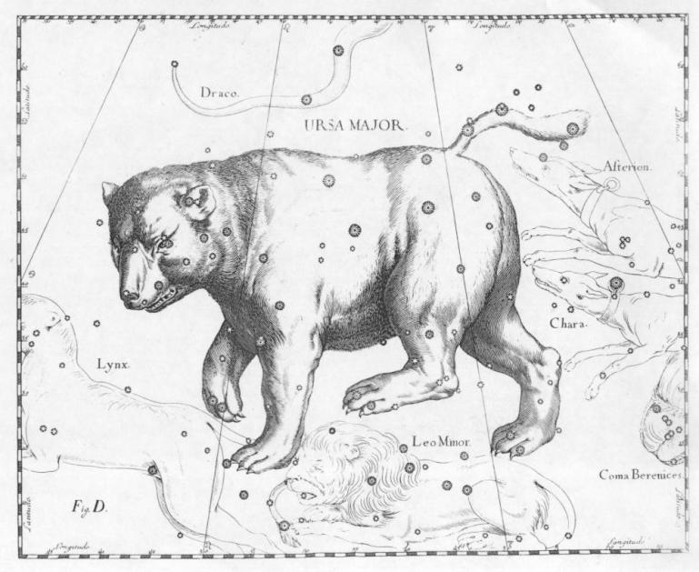Ursa_Major_constellation_JohannesHevelius