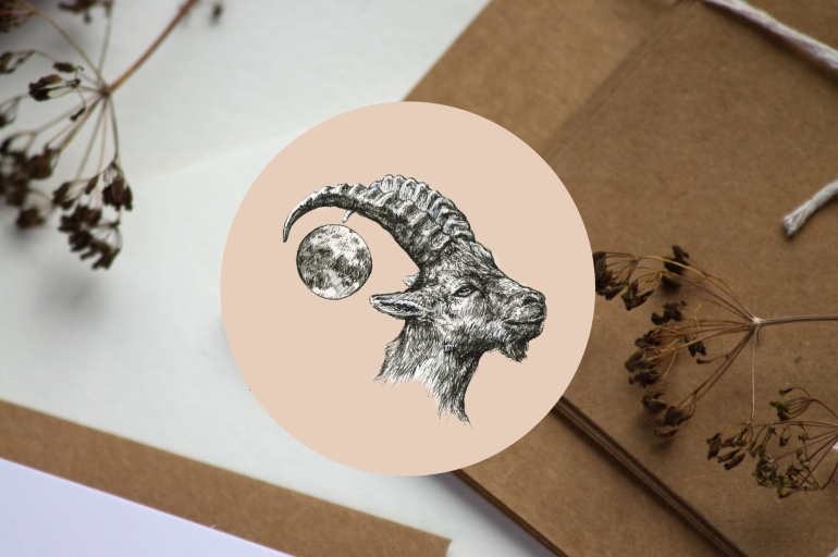 Ibex intro